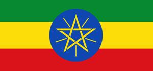 L'Ethiopie veut attirer plus d'investissements