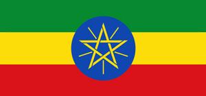 L'Ethiopie ouvre le capital des sociétés publiques aux investisseurs privés
