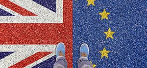 Réunions Douanes Entreprises sur le Brexit en région
