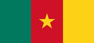 Cameroun : malgré les risques, le FMI reste optimiste sur la croissance